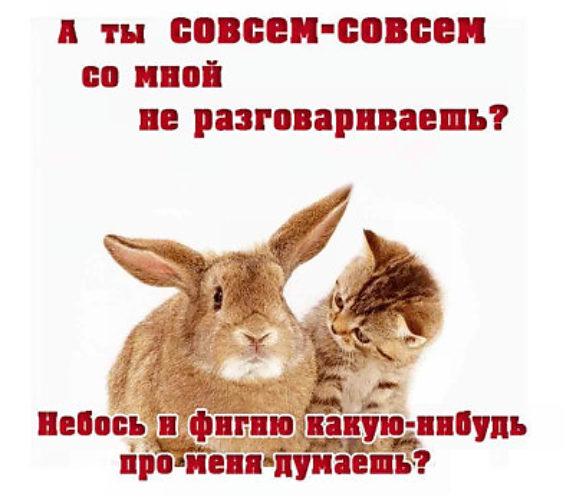 http://i2.tabor.ru/feed/2016-04-18/11493691/21253_760x500.jpg