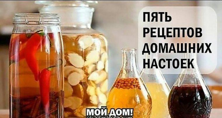 Рецепты наливок настоек на спирту в домашних  593