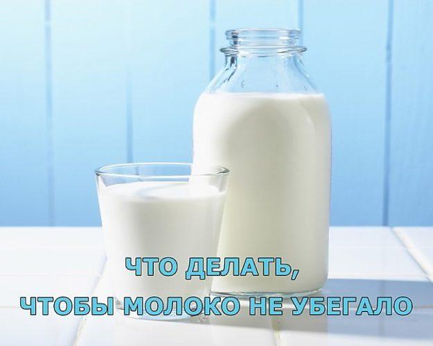 Как сделать чтобы молоко не убегало