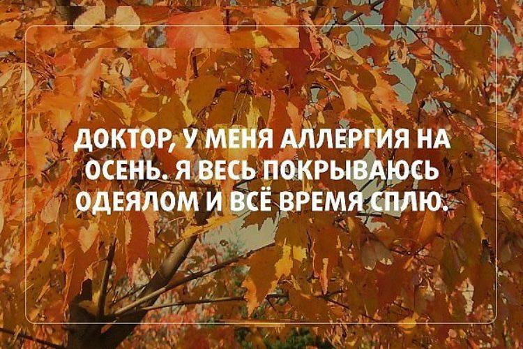 Осенние цитаты к фотографиям