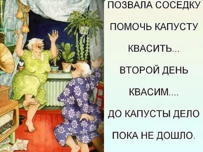 bolshie-popki-hotyat-seksa