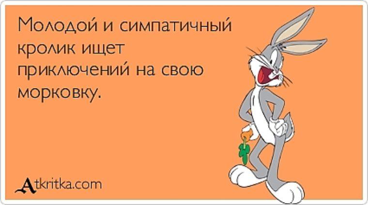 popa-ishet-priklyucheniy