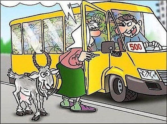 смешные истории в маршрутном такси пресс шнеквый кирпич