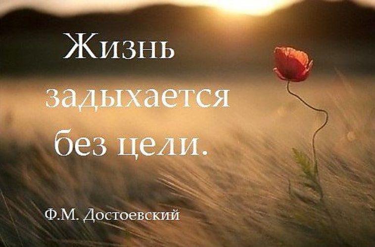 стихи жизнь задыхается без цели если зарядить