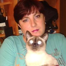 Фотография девушки Надежда, 38 лет из г. Ясногорск