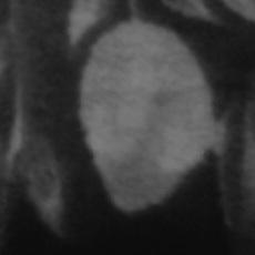 Фотография мужчины Pixma, 25 лет из г. Гомель