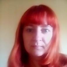 Фотография девушки Svetlana, 41 год из г. Житомир